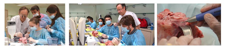 formación en implantología cirugía de injerto óseo 2