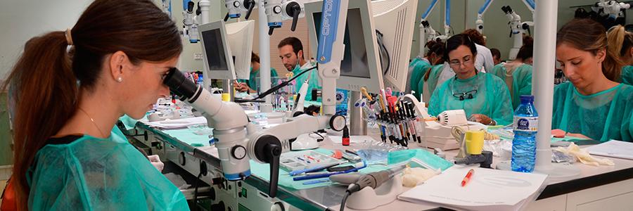 formacion curso endodoncia