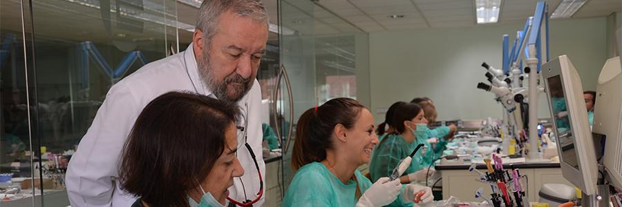 formación en estetica dental