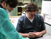 curso-estetica-dental-odontologia-rabago